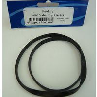 Poolrite Enduro Pool Pump Lid Gasket Oring & V600 Filter Valve Gasket